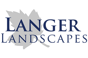 Langer Landscapes
